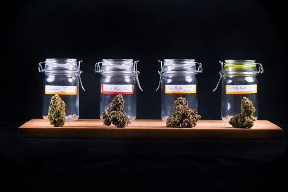 Medical marijuana jars in a retail store
